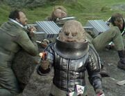 Sontaran and prisoners TSE