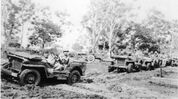Early Willys MB Jeeps