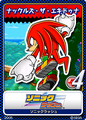 Sonic Rush10 Knuckles