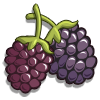 Darrow Blackberry-icon