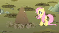 Fluttershy oh my S01E19