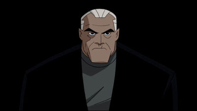 Bruce Wayne (Justice League Unlimited)2