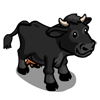 Black Shorthorn Cow-icon