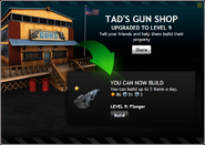 TadsGunShopLevel9