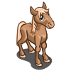 Draft Foal-icon