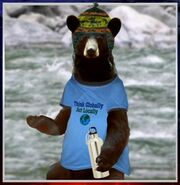 Enviro hippie bear