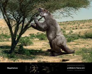 Megatherium - Dinopedia - the free dinosaur encyclopedia