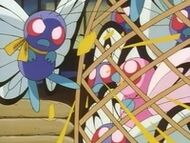 EP021 Butterfree usando Placaje
