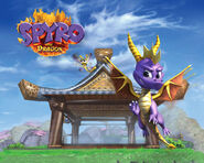 Spyro the Dragon Dojo Wallpaper