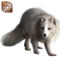 Huge item arcticfox bronze 01