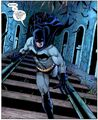 Batman Dick Grayson 0035