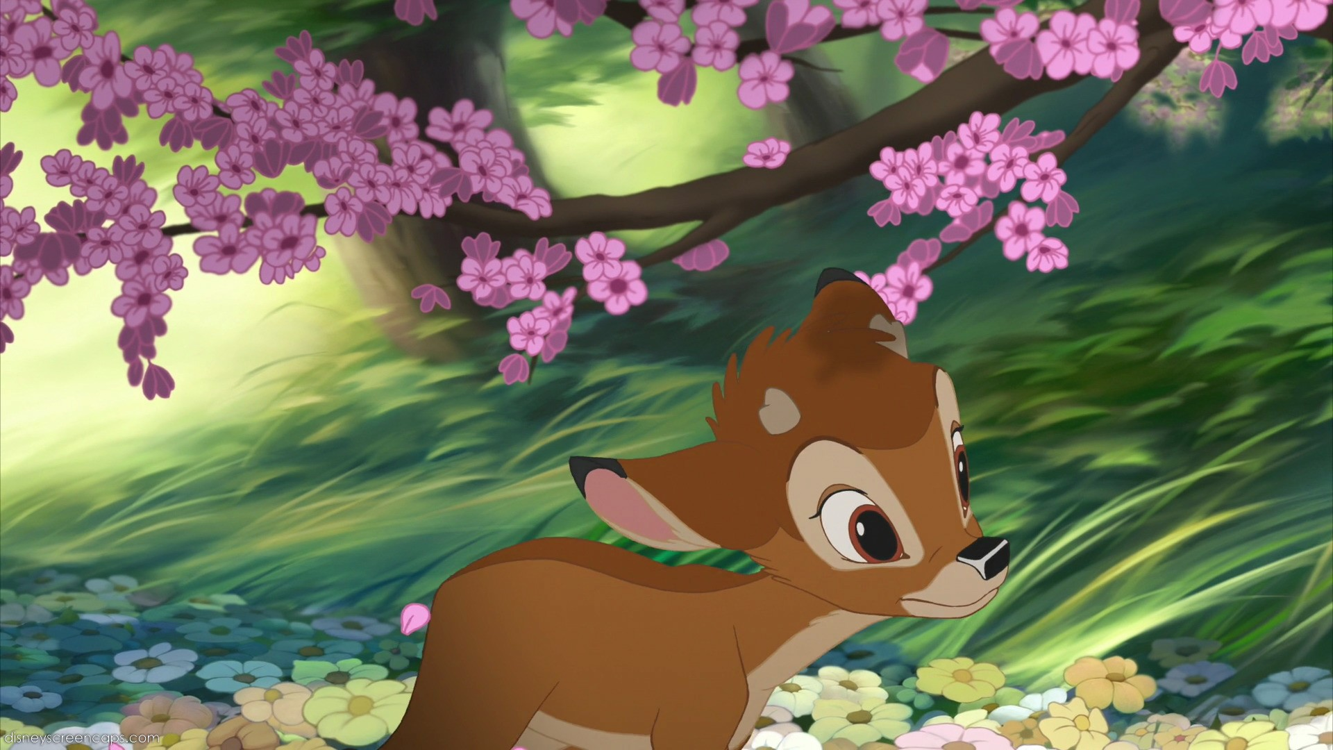 Bambi character disney wiki