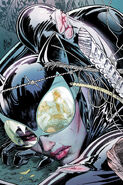 Catwoman Vol 4-5 Cover-1 Teaser