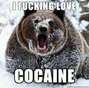 Coke-bear