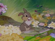 Bambi-disneyscreencaps com-1375