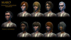 Companions01 800x450