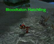 (Echo Isles) Bloodtalon Hatchling