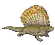 Edaphosaurus colohistion