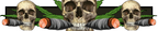 Iw5 cardtitle joint skulls.png
