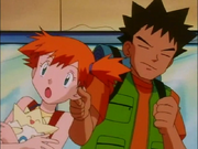 Brock Misty ear