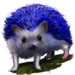 Item bluehedgehog 01