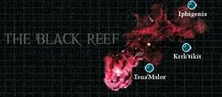 Black Reef