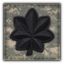 MW3 Rank LtCol