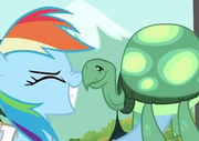 Rainbow Dash and Tank nose kissing S2E7
