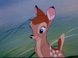 Bambi-bambi-5778390-1280-960