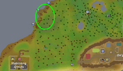 Junglestrykewyrmlocation