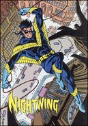 Nightwing profile whos90s