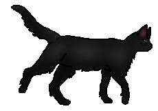 20120130235701!Hollyleaf.loner.png