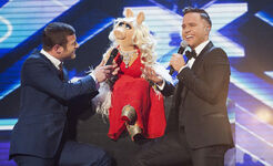 X-Factor-week-results-Olly-Murs-Miss-Piggy 213837