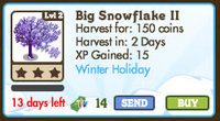 Big Snowflake II Market Info
