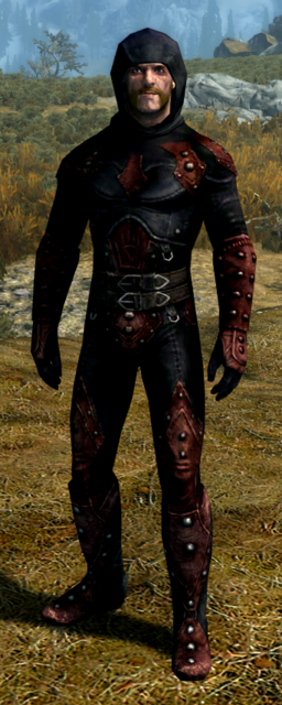 Dark Brotherhood Assassin