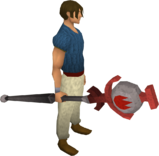 Fire talisman staff equipped
