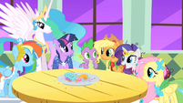 Main ponies and Princess Celestia S01E26