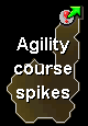 Wildy agility dungeon