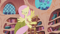 Fluttershy cleaning Twilight's library S01E03