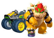Bowsercrushcan7