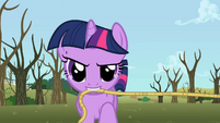 Twilight with a rope S2E10