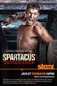 http://www.starz.com/features/spartacusVengeance/wallpapers/SPS2_spartacus_1920x1200