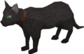 Bob the Jagex cat.png