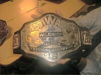 NWA Wildside Tag Team Championship