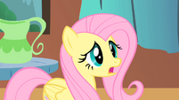 Fluttershy worried S01E22 (2)