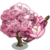Pink Magnolia Tree-icon