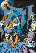 Nightwing4yq