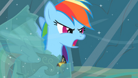 "Rainbow Dash ""Earth ponies are numbskulls!"" S2E11"