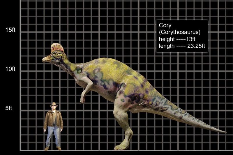 Corythosaurus - Jurassic Park WikiJurassic Park Corythosaurus
