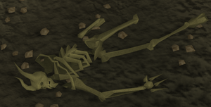 Dragonkin skeleton